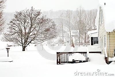 February 2010 Storm