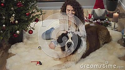 Fecho da sorridente garota morena caucasiana levantando as orelhas do cachorro grande e olhando para a câmera Feliz mulher alegre video estoque