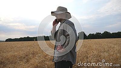 Fecho de um fazendeiro macho em pé no campo de trigo e falando no telefone celular Jovens agrônomos que usam o telefone celular p filme