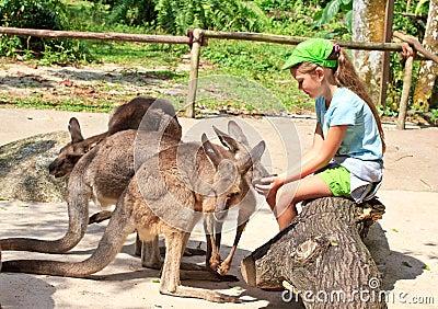 Feeding kangas