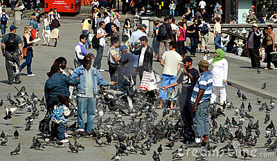 Feeding pigeons Editorial Photography