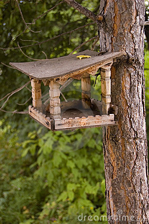 Free Feeding Rack For Birds And Squirrels. Stock Photos - 5901163