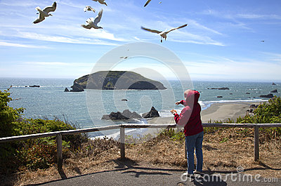 Feeding the seagulls, OR., coastline.