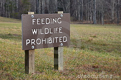 Feeding Wildlife Prohibited
