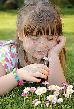 Feeling daisies