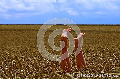 Feet in the field