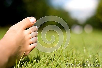 Feet and grass.
