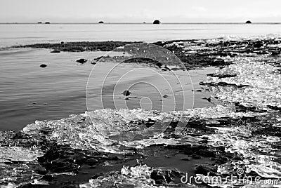 Feezing sea