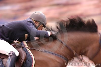 FEI Worldcup Winner Editorial Stock Photo