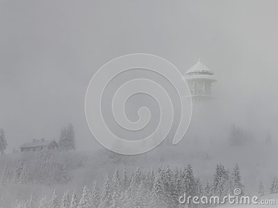 Felberg summit - Black Forest