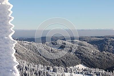 Felberg summit, Black Forest - Germany