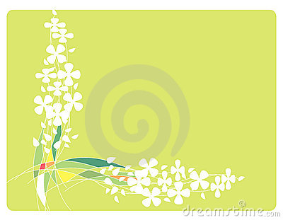 Feld mit Blumen und Zeilen