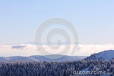 Feldberg, Black Forest - Germany