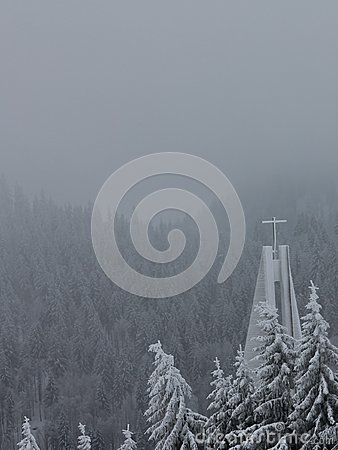 Feldberg, bosque negro - Alemania