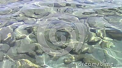 Felsen Unterwasser stock video footage