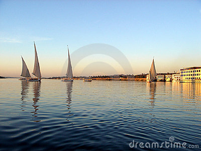 Felucca s on the Nile