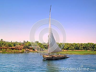 Feluka sailing on Nile
