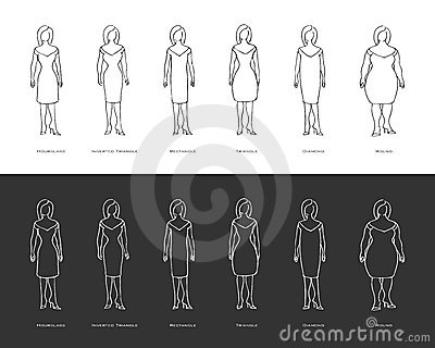 The female body types