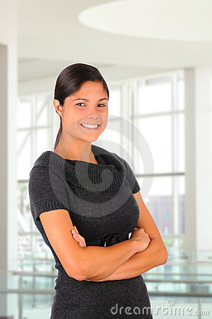 Free Female Business Professional Royalty Free Stock Photography - 17024047