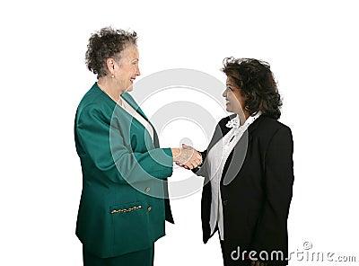 Female Business Team Shake Hands