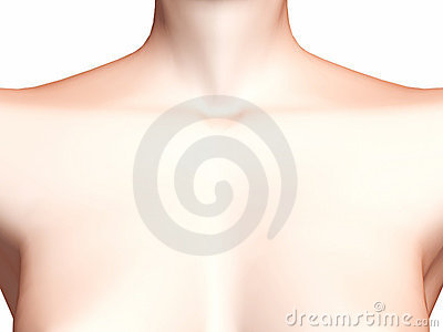Female chest and neck