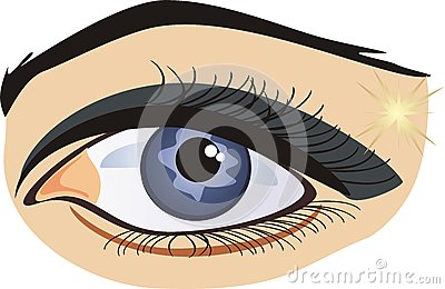 Female eye on the white background