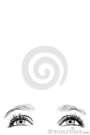 Free Female Eyes Stock Photography - 437172