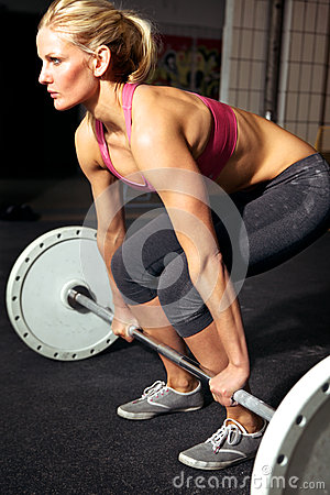 Free Female Fitness Workout Royalty Free Stock Image - 25317316