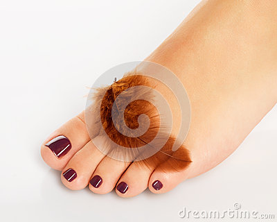 Female foot with beautiful pedicure after spa procedure