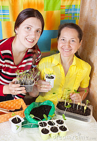 Female gardeners with  seedling