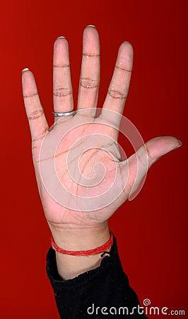 Female hand palm