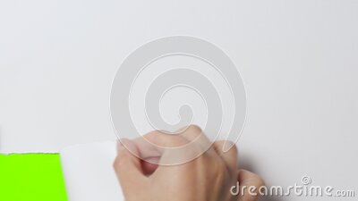 Female hand tearing off part of white cardboard banner, concept advertising, revealing green screen with copy space stock footage