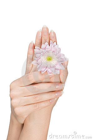 Female hands with flower