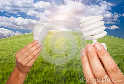 Female Hands Holding Light Bulbs