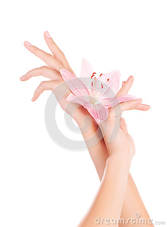 Free Female Hands With Lily Flowers Royalty Free Stock Photography - 29392917