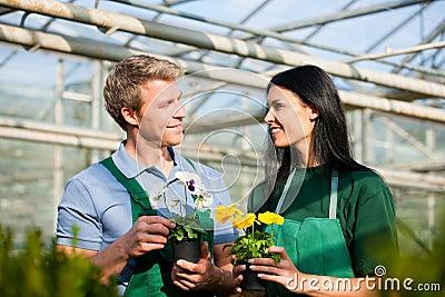 Female and male gardener in market garden