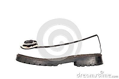 Female or male shoe