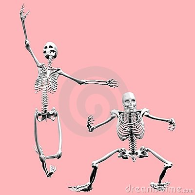 Female and Male Skeletons