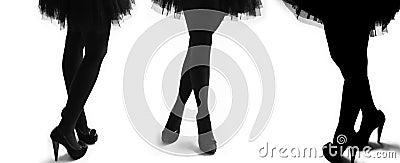 Female models legs