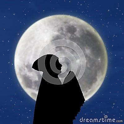 Female muslim praying under blue moon