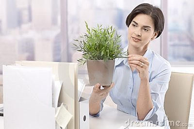 Female office worker holding potted plant