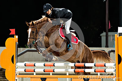 Female rider participates in horse jumping Editorial Stock Image
