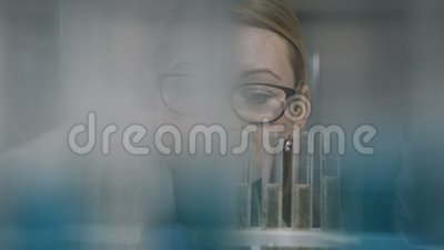 Female scientist examining test tube in lab stock footage
