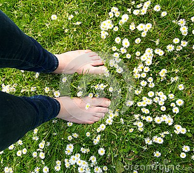 Free Female Standing Barefoot On Green Grass And White Flowers Royalty Free Stock Image - 31881856