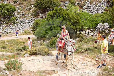 The female tourist on a donkey Editorial Image