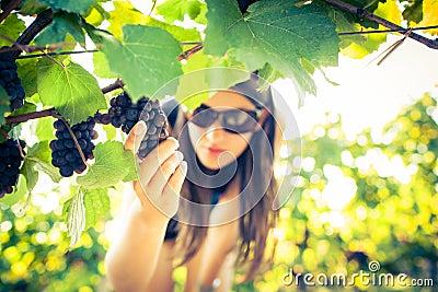 Female vintner