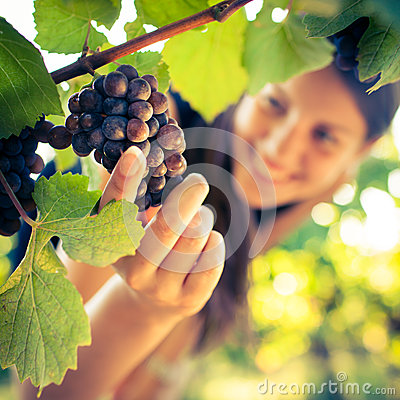 Female vintner