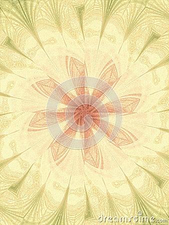 Feminine Floral Backgrounds