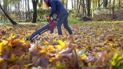 Femme de maison soufflant des feuilles colorées avec une machine à souffler des feuilles dans le jardin banque de vidéos