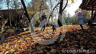 Femme et fillette courant autour d'un petit garçon Famille heureuse entre les feuilles banque de vidéos